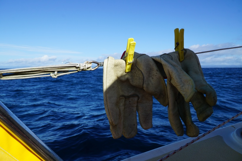 Gloves hanging on the sail boat